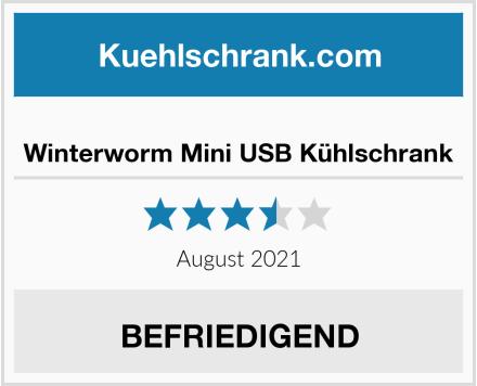 Winterworm Mini USB Kühlschrank Test